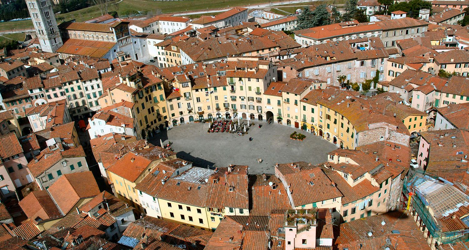 Lucca, its wine and olive oil